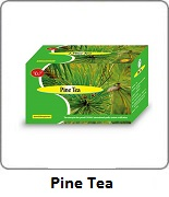 Pine Tea Wootekh